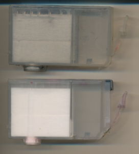 BCI-3 - CLI-8 flushed.jpg