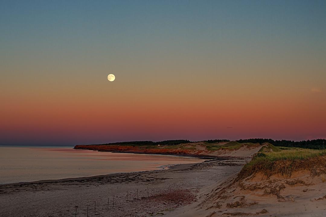 Harvest Moon rising over Cavendish Beach PEI 1080pxls.jpg