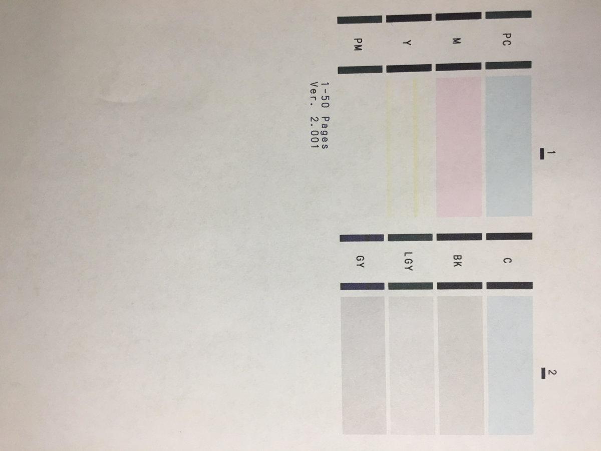 Canon Pixma Pro 100 Nozzle check revealing missing colors