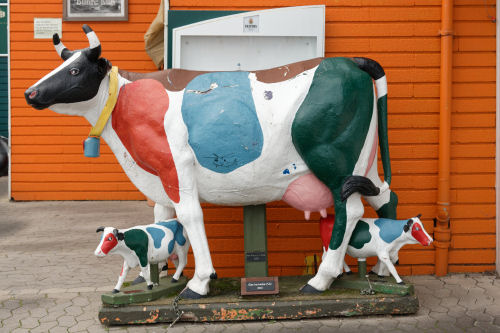 Painted Cow.jpg