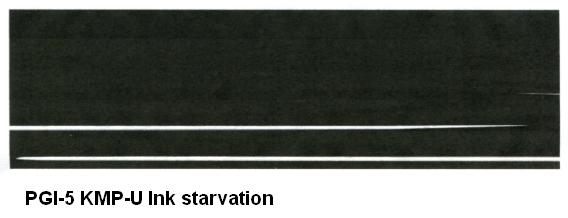 PGI-5 Ink starvation.jpg